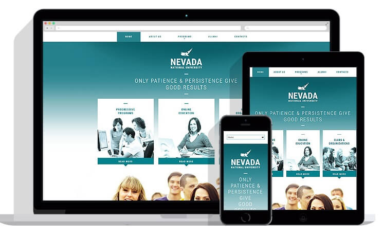 What Are The Benefits Of Using Flash Responsive Website Templates